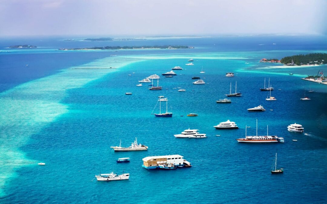 sailboats, motor yachts and hybrid boats